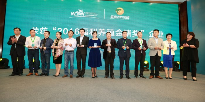 gppa-winners-on-stage-oct-2017.jpg